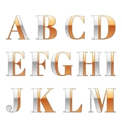 Gold and Silver metal font Metallic luxury vector image