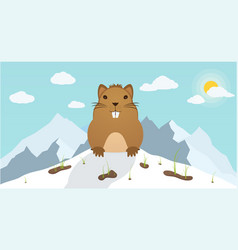 groundhog day marmot climbed out of hole on vector image