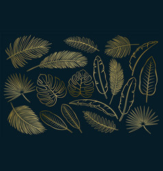set black and white tropical leaves and vector image