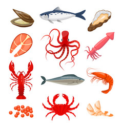 Set seafood vector