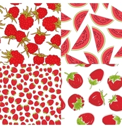 Ripe red raspberry strawberry watermelon Set of vector image vector image