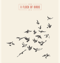 a flock of birds drawn sketch vector image vector image