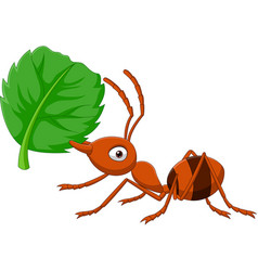 Cartoon ant with green leaf vector