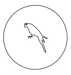 parrot icon black color in circle vector image