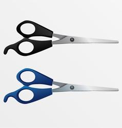 Two scissors vector image