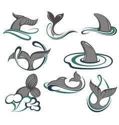 whales and sea waves vector image