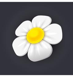 Chamomile icon vector image vector image