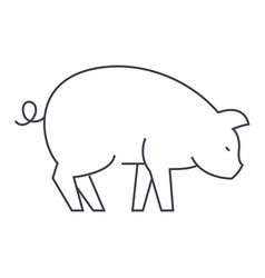 pig line icon sign on vector image vector image
