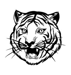 Angry tiger head is roaring black and white vector