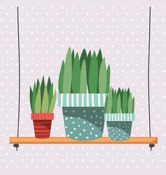 Houseplants in macrame hangers and swing vector