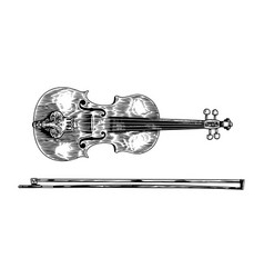 jazz violin and bow in monochrome engraved vintage vector image