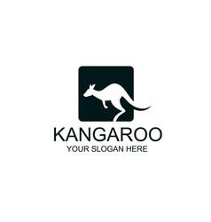 jumping kangaroo icon vector image
