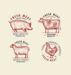 meat set labels butcher shop symbol vintage vector image