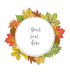 Postcard with colorful autumn leaves wreath of vector