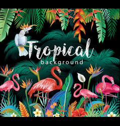Tropical flowers leaves flamingoes and parrots vector