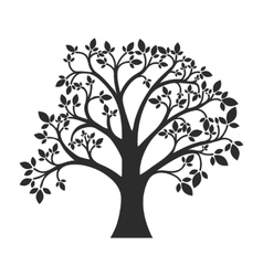silhouette of tree with leaves vector image
