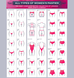 all types womens panties the most complete vector image