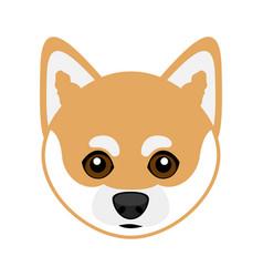 Cute shiba inu dog avatar vector