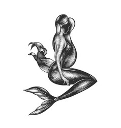Engraved style mermaid for posters decor vector