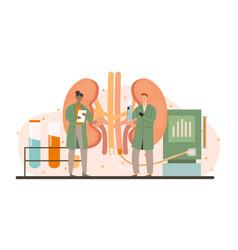 Procedure for kidney treatment concept vector
