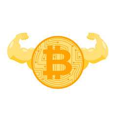 strong bitcoin powerful crypto currency financial vector image