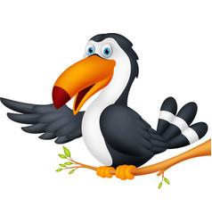 Toucan bird cartoon presenting vector