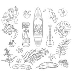 tropical set summer hawaii symbols - plants vector image