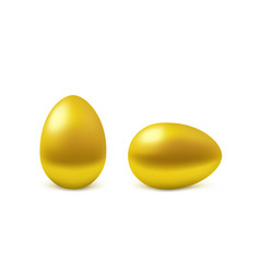 two realistic golden eggs vector image