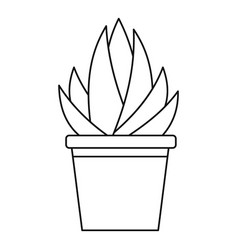 Aloe humilis plant icon outline style vector