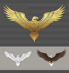 American eagle with spread wings vector