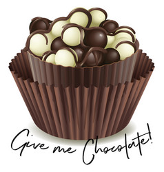 chocolate cupcake with phrase give me chocolate vector image vector image