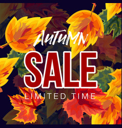 colorful autumnal sale banner vector image