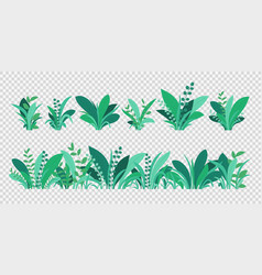 Green grass spring and summer various plants vector