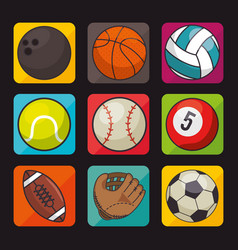 set of sports icon vector image