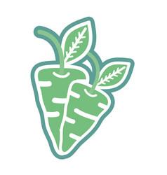 Contour delicious carrots healthy fruit vector
