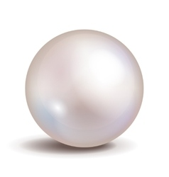 pearl isolated on white background Shiny vector image