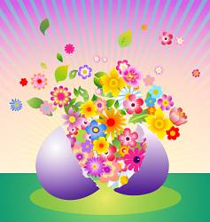 floral explosion vector image