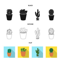 isolated object of cactus and pot logo set of vector image