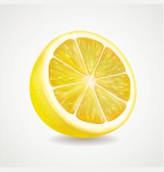Lemon fruit realistic vector