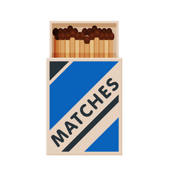 Opened cardboard matchbox with matches sulphur vector