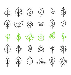 outline leaves isolated icon set vector image