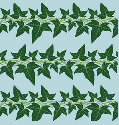 seamless pattern with ivy leaves vector image