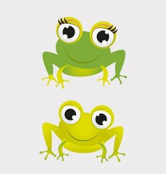 Two Frog vector image