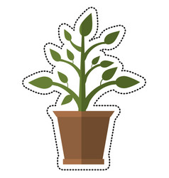 cartoon pot plant garden image vector image