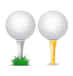 Golf Balls vector image vector image