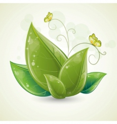 green leaves design with butterfly vector image vector image
