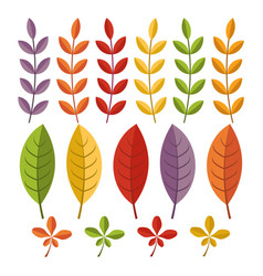 autumn leaves on white backgroundautumn icons vector image