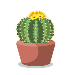 Big cactus ball in a red ceramic pot decorative vector