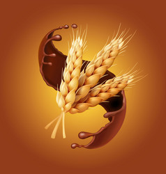 Bunch of wheat or barley ears in chocolate vector