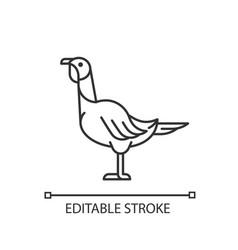 Female turkey linear icon vector